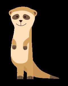 Fun Character Bin Graphic Meerkat
